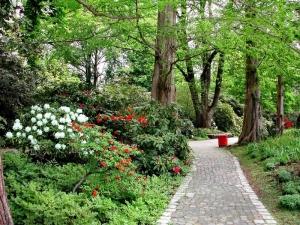 Besucherinfo_frei_luisenpark_Wege_377