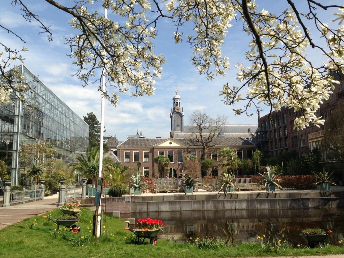 Fabelhaft EGHN – Botanischer Garten Leiden / Hortus botanicus – eine grüne #SD_68