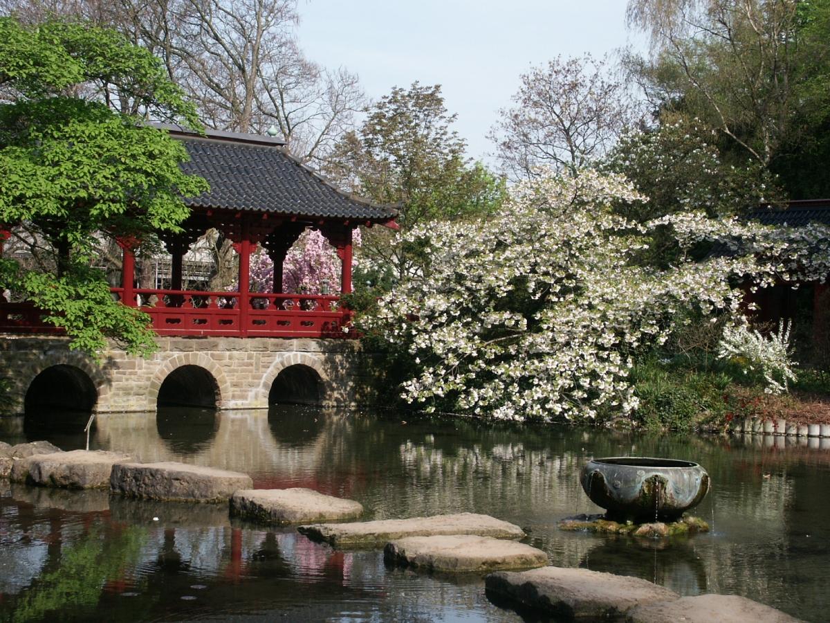 EGHN – Le parc Carl Duisberg et le jardin japonais