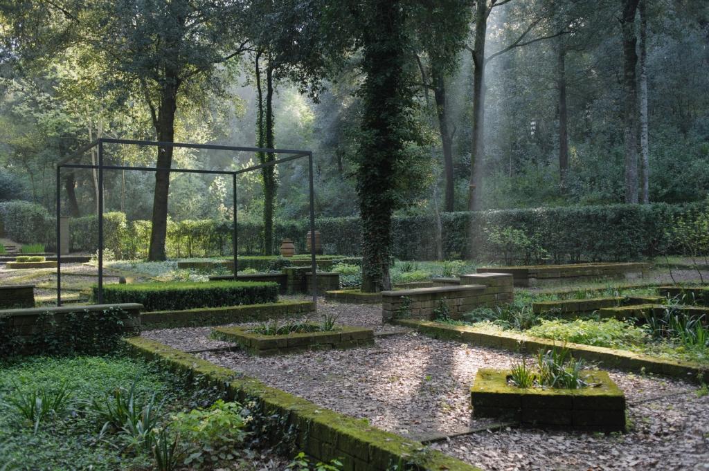 bosco-della-ragnaia-foto-sheppard-craige-1