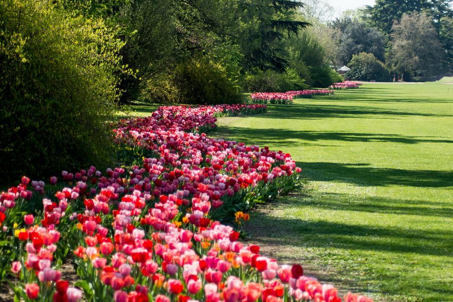 parco-giardino-sigurta-foto-pgs-1