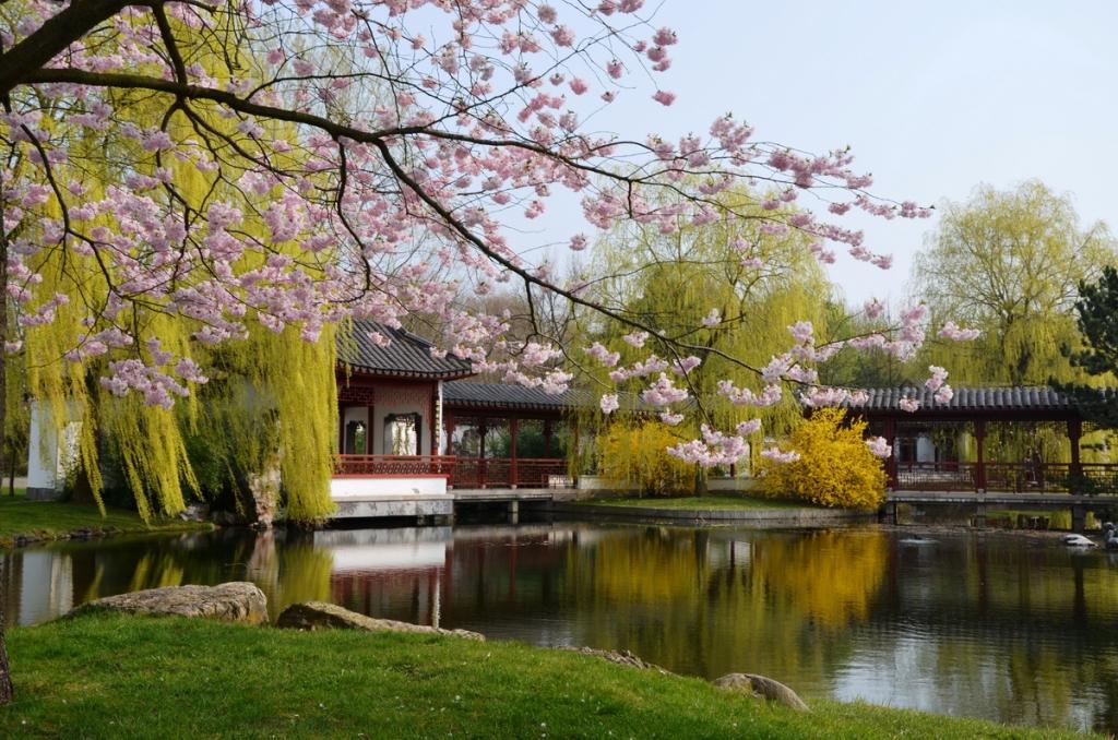 Eghn Die Gärten Der Welt Zentrum Internationaler Garten Und